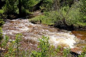 Creek on Ranch