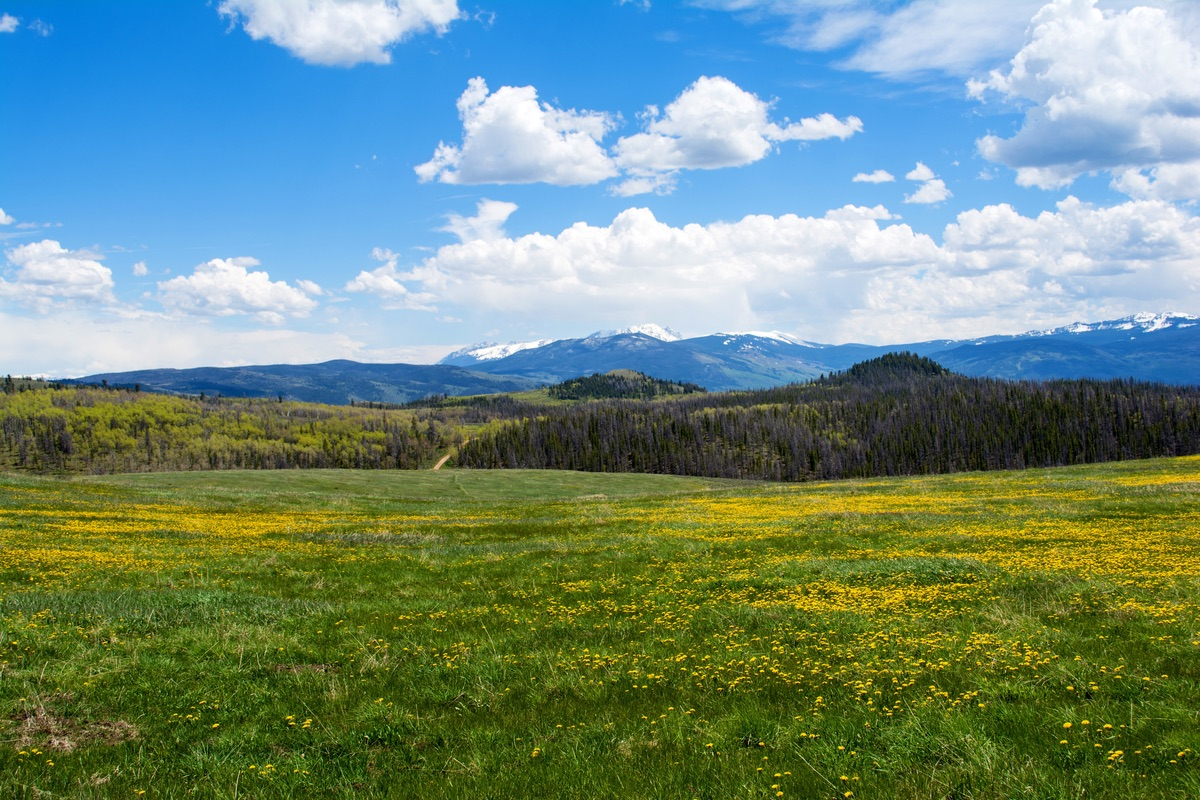 Spectacular View of Gore Range from Aspen Ridge Ranch, for sale near Kremmling, Colorado