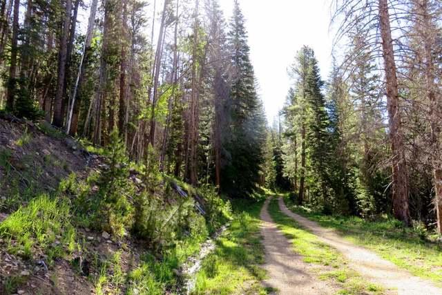 quiet roadway