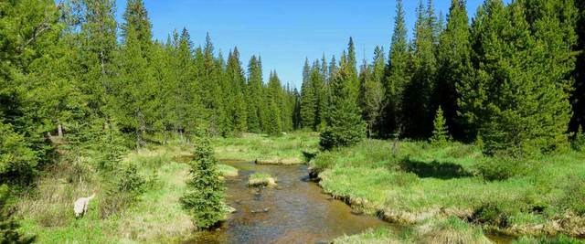 Ranch Creek with Timber here and there