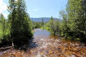 Creek in median