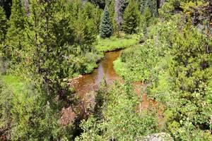 Tonahutu Creek