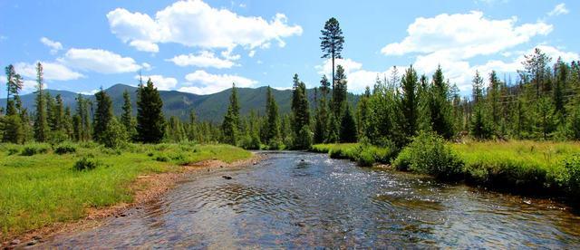 Ranch for Sale in Colorado